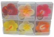 SET OF 6 FLOATING SCENTED CANDLE - HAWAIIAN FLORAL