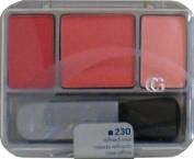 Cov Girl Cheekbone Blush (L) - Case Pack 27 SKU-PAS903534