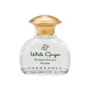 White Ginger Perfume by TerraNova for women Personal Fragrances