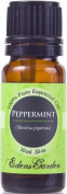 Peppermint 100% Pure Therapeutic Grade Essential Oil- 10 ml
