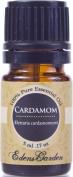 Cardamom 100% Pure Therapeutic Grade Essential Oil- 5 ml