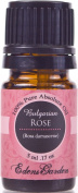 Rose (Bulgarian) 100% Pure Therapeutic Grade Absolute Oil- 5 ml