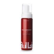 Paul Labrecque Colour Style Fade Prevention Foam