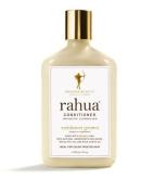Amazon Beauty - Rahua Conditioner