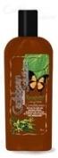 Caribbean Solutions Rainforest Citrus Mint Conditioner