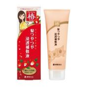 YANAGIYA TSUBAKI chan   Hair Treatment   TSUYATSUYA Shiny Hair Lotion 120g