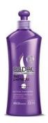 Sedal Liso Perfecto Anti-Frizz Crema Para Peinar (Hair Cream Perfect Flat) 300 ml