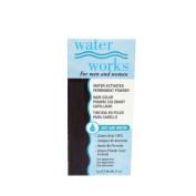 Waterworks Blue Black Hair Colour