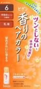 Bigen Fragrance Hair Colour #6 Dark Brown Milky Type 06 - 1 pc