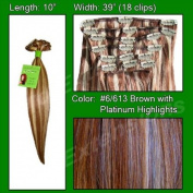 Brybelly Holdings PRST-10-6613 No. 6-613 Chestnut Brown with Platinum Highlights - 25cm