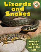 Lizards and Snakes (Pets Plus)