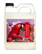 Fruits & Passion Imagine Hand Soap Refill, Apple Illusion, 1000ml Bottle