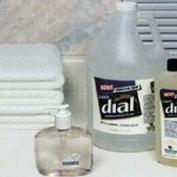LIQUID DIAL CLEAR GALLON 82838 by BND 000GL STRAUSS PAPER CO., INC.