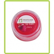 Herbal Ointment Virgin Coconut Oil Lip Balm 10g. Smell Cherry