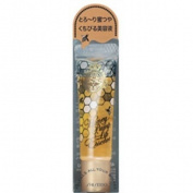 Shiseido MAJOLICA MAJORCA | Lip Serum | Honey Pump Lip Essence 6.5g