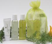CareNatural Tea Tree Acne Free Skincare Travel Set, Natural & Organic