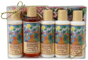 Gift Set - Includes Five - 120ml Natural Sun Protection Lotions - Moisturiser - Tanning Oil - SPF 4 - SPF 8 - SPF 15 - Great Gift Idea for Any Occasion - Birthday