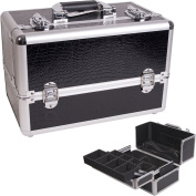 Professional Cosmetic Makeup Case Colour