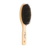 Brush Strokes Oval Boar Bristle Cushion Paddle Brush