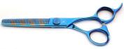 Tsubame Japanese Hairdressing Scissor BG01-6030V Japan 440C Steel