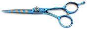 Tsubame Japanese Hairdressing Scissor BG02-550 Japan 440C Steel
