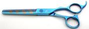 Tsubame Japanese Hairdressing Scissor BG04-6030V Japan 440C Steel