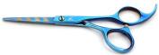 Tsubame Japanese Hairdressing Scissor BG05-525 Japan 440C Steel