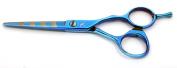 Tsubame Japanese Hairdressing Scissor BG08-550 Japan 440C Steel