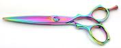 Tsubame Japanese Hairdressing Scissor FC03-600 Japan 440C Steel