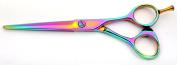 Tsubame Japanese Hairdressing Scissor FC07-600 Japan 440C Steel