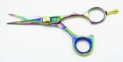 Hasami E55 Rainbow Shear 12.7cm