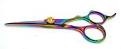 Hasami M65 Rainbow Shear 15.2cm