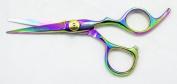 Hasami Rainbow Shear Finger Rest 12.7cm W50-R Wanda