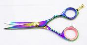 Hasami Rainbow Shear With Removable Finger Rest 14cm B60-R Brenda