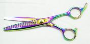 Hasami Shear 14 Teeth W/ Finger Rest 15.2cm