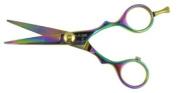 Hasami R50-R Rainbow 12.7cm