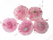 Pack of 5 Pink Colour Girl Baby Toddler Mixed Design with Organza and Beads Hair Clips