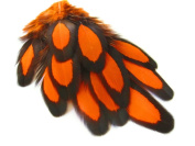 Orange Laced Hen Feathers for Crafting 12pc/bag