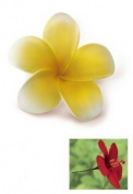 Hawaiian Hair Pick Foam Flower Plumeria Yellow & White