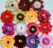 (12) Splash of Colour Hair Clips-Gerbera Daisies