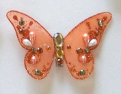 Orange Butterfly Clip