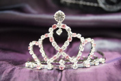 Beautiful Bridal Wedding Tiara Crown with Pink Crystal Party Accessories DH14857