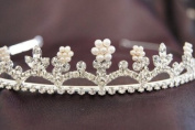 Beautiful Bridal Wedding Tiara Crown with Crystal Party Accessories DH14493