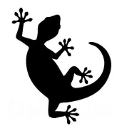 Lizard Make Up Stencil- 5 Pack