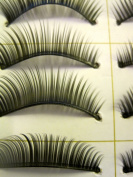10 Pair Natural Long Black False Eyelashes