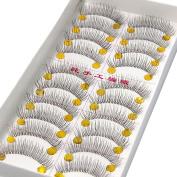 10 Pairs of Reusable Natural and Regular Long False Eyelashes