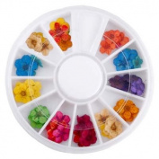 60 Dry Flower Nail Art Tips Decoration UV Gel Acrylic