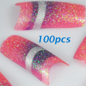 100 Glitter Colourful French False Acrylic Nail Tips