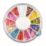 12 Colours Beautiful Flowers Designs Nail Art Polymer Decal Slices in Wheel - Ready to Use by Winstonia