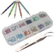 3000pcs 2mm 12 Colour Nail Art Glitter Rhinestones Tips + 5 x 2 Way Marbleizing Dotting Pen + Tweezer